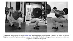 Squats as demonstrated in Starting Strength.